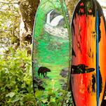 Tofino Arts Council Boardwalk - Pacific Sands, Tofino BC
