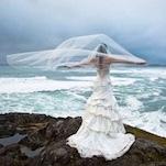 Tofino Wedding Fair Packages - Tofino BC