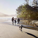 Spring Happenings - Pacific Sands, Tofino BC
