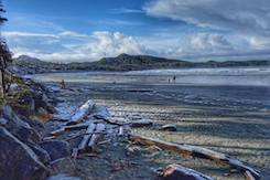 Pacific Sands Photo Contest Winner